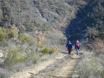 Trekking Familiar alrededores de Garaño