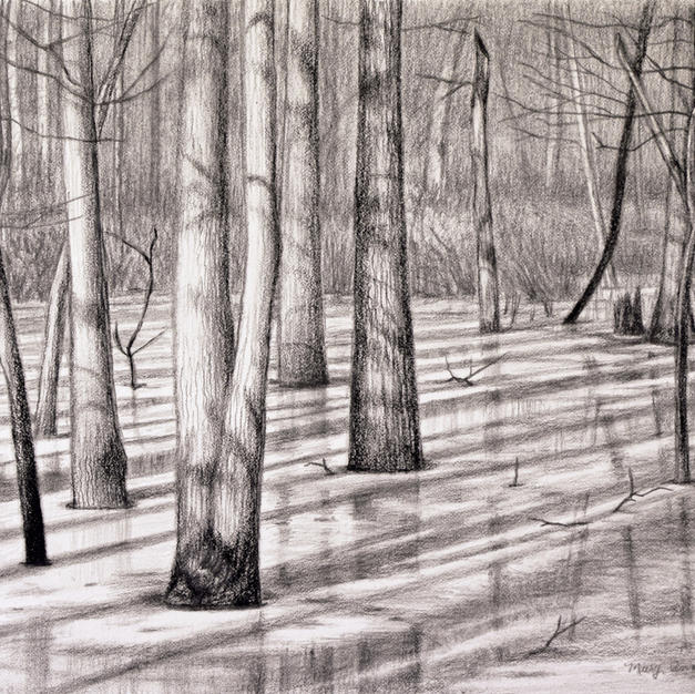 """Almost Spring', Mary Ann Pals (Charcoal, Graphite)"