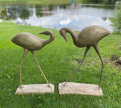 Water Birds.jpeg