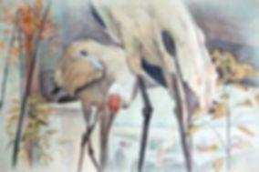 Peggy Macnamara, watercolor, art class, painting, workshop, birds