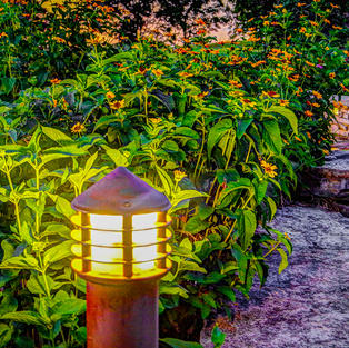 """Coffee Creek Glow"", Peggy Carter (Photography)"