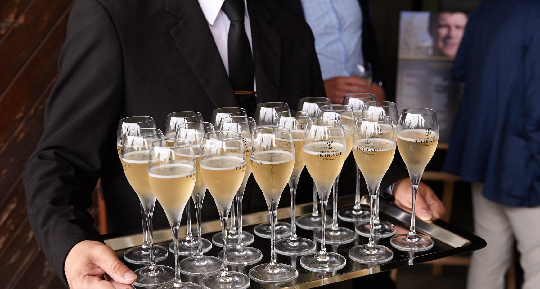 Dégustation du Champagne Tribaut