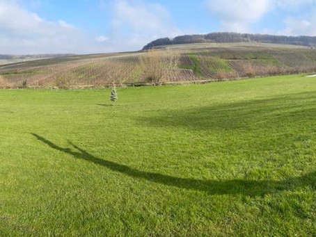 Le Footgolf Parc en Champagne reste ouvert