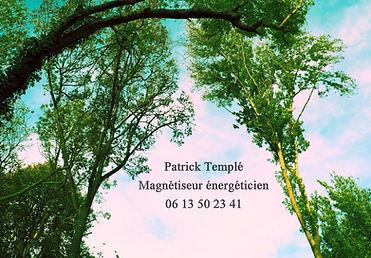 Arche d'arbres - Copie.JPG