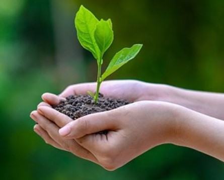 Green Economy, Diversification, Recycling and Sustainable Environmental Management