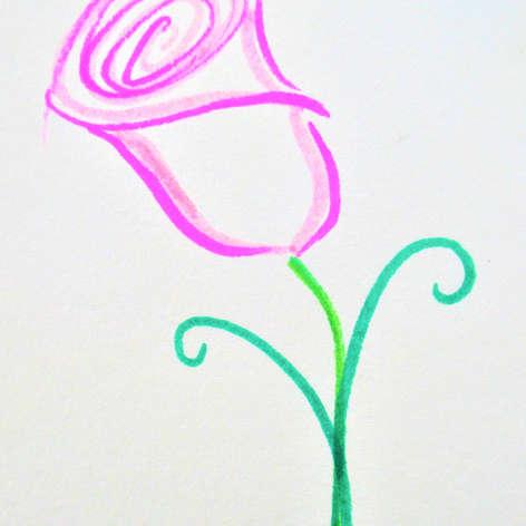 Elegant Rose
