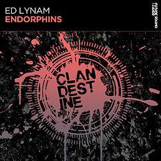 Ed Lynam - Endorphins Packshot.jpg