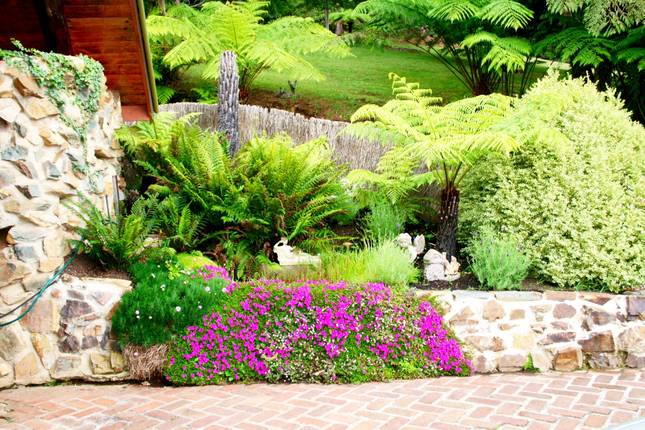 Garden on side of carport