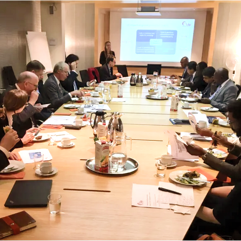 The Circular Economy – What's in it for Developing Economies?Lunch Event at the Dutch Permanent Rep