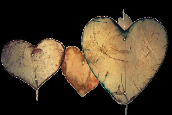 hanging-heart-romance-37410-removebg-pre