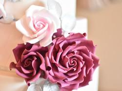 burgundy blush roses