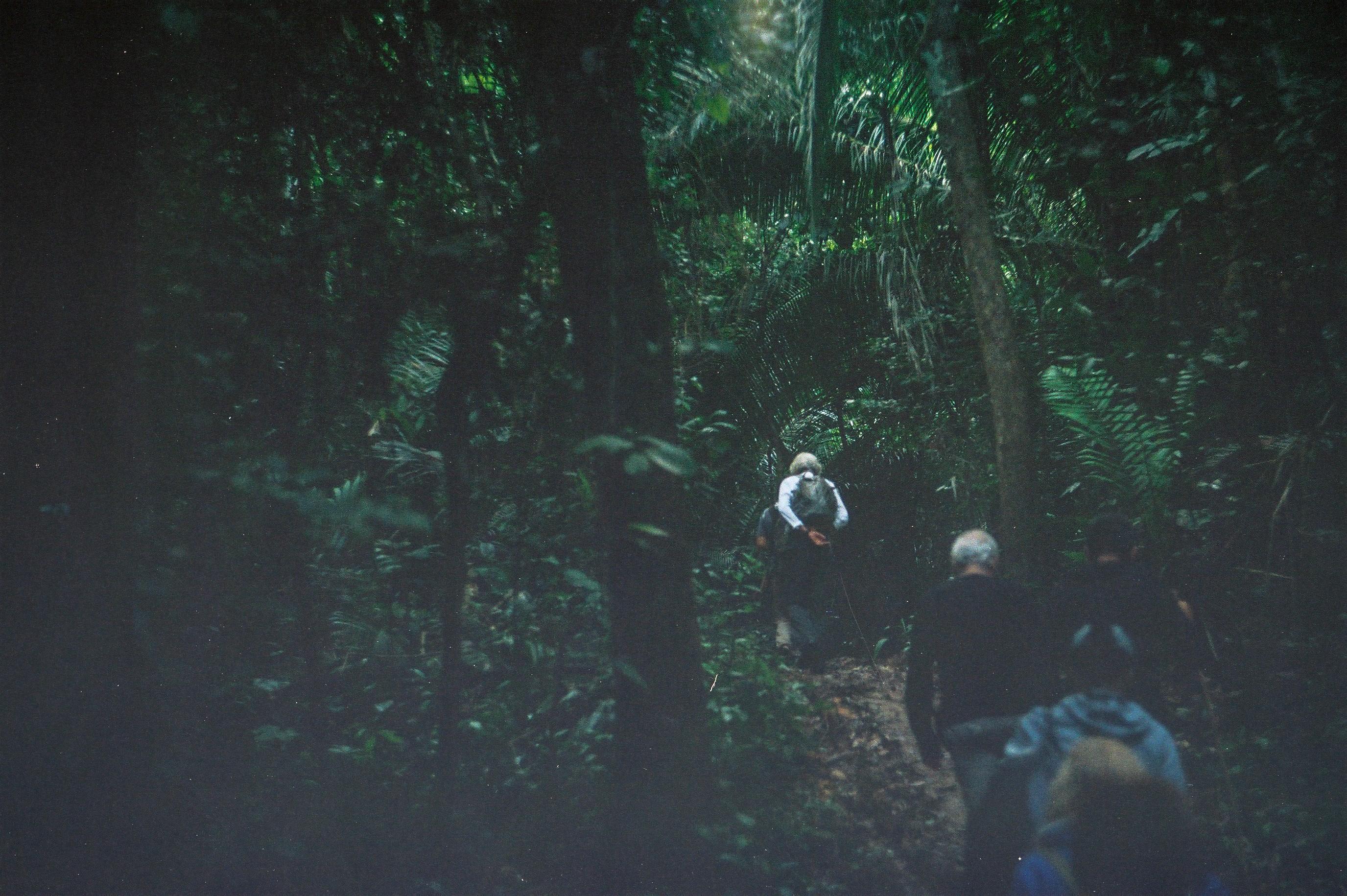 Amazonia Peruana- Buddhy-57