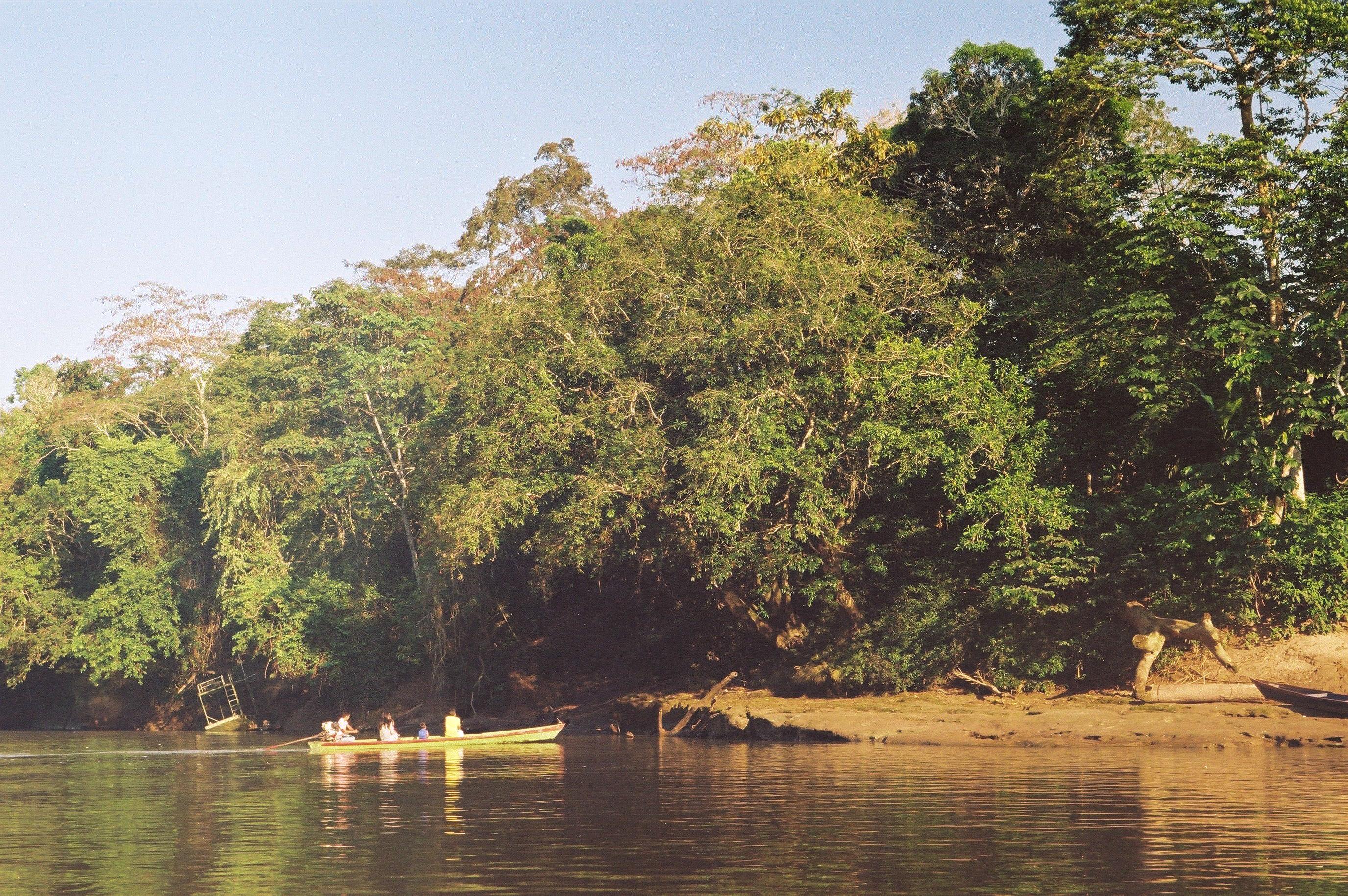 Amazonia Peruana- Buddhy-75