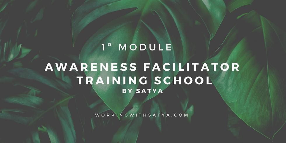 Awareness Facilitator Training School - 1º Module