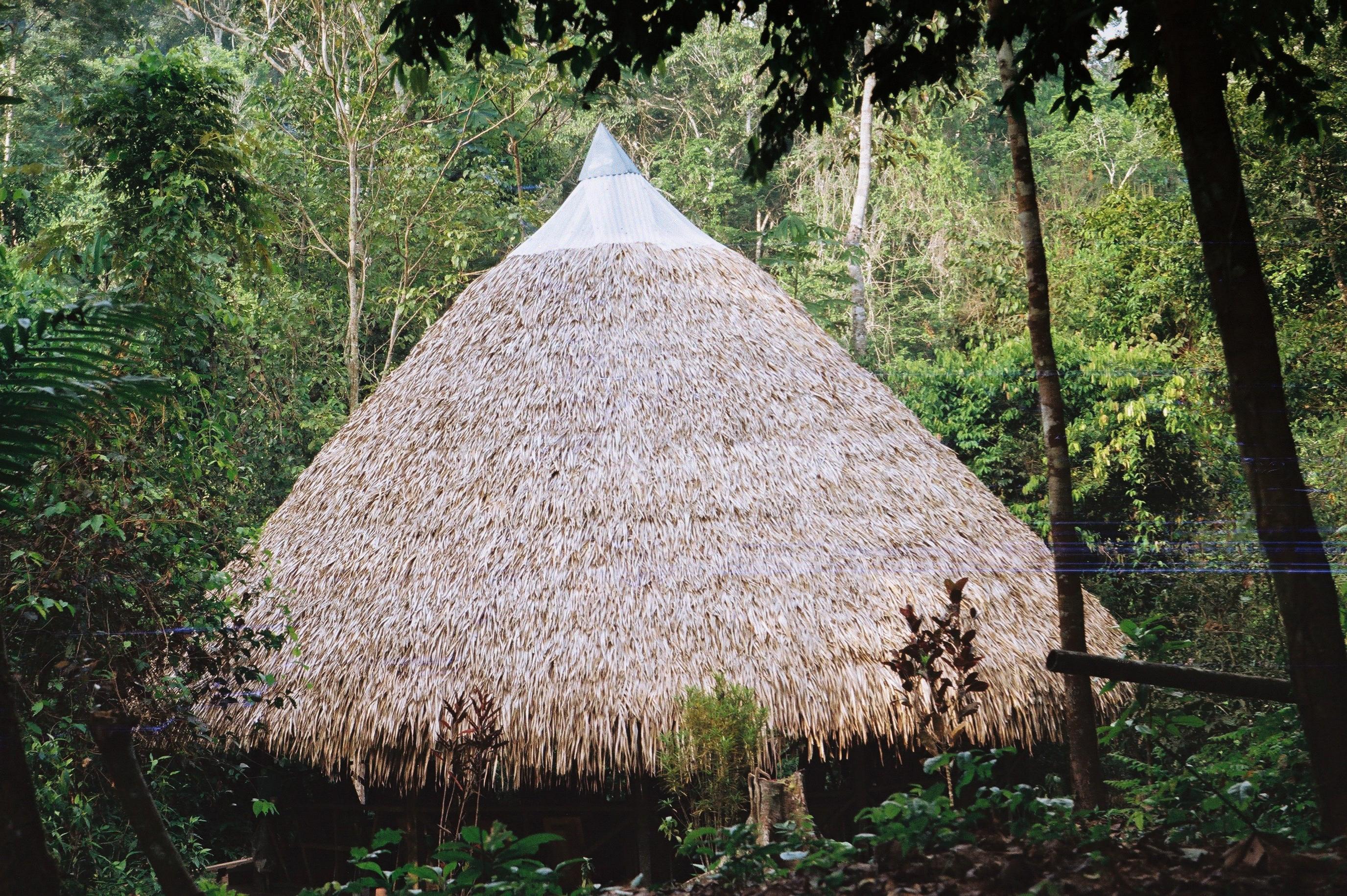 Amazonia Peruana- Buddhy-29