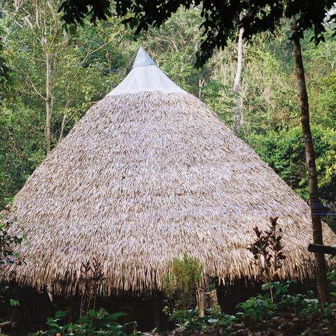Amazonia Peruana- Buddhy-29.jpg