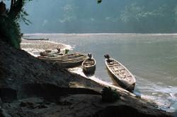 Amazonia Peruana- Buddhy-78