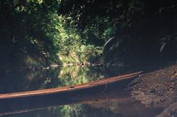 Amazonia Peruana- Buddhy-28