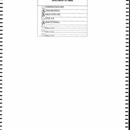 St. Paul Spoiled Ballots_Page_1324.jpg