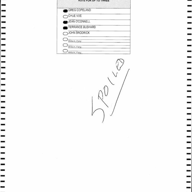 St. Paul Spoiled Ballots_Page_1290.jpg