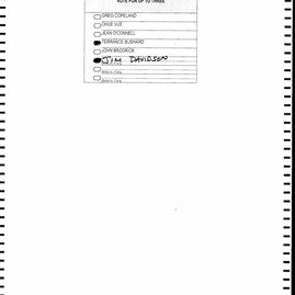 St. Paul Spoiled Ballots_Page_1273.jpg