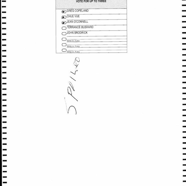 St. Paul Spoiled Ballots_Page_1288.jpg