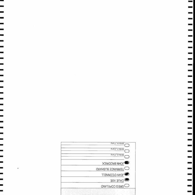 St. Paul Spoiled Ballots_Page_1295.jpg