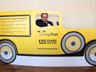LOCAL MP TO HELP DRIVE CHANGE FOR DOG WELFARE