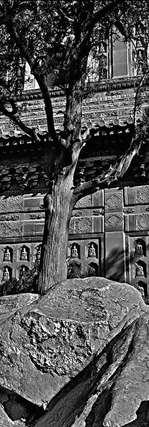 Reisfotografie China Beijing