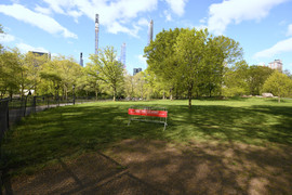 Social Distancing in the Park