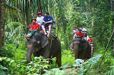 pattaya-elephant-village-the-gulf-coast-