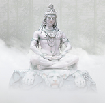 Shiva Tesouros do ayurveda.png