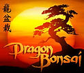 dragon bonsai