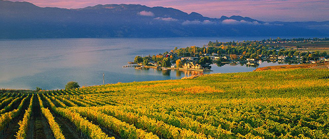 Okanagan Lake Winery Kelowna British Columbia