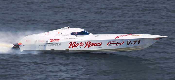 42' Lightning 'Rio Roses'