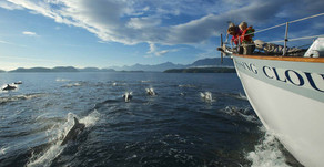 Chartering a Boat to Explore British Columbia's Gulf Islands