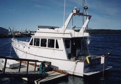 43' Flybridge Trawler