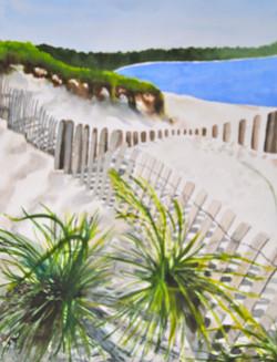 fenced beach.jpg