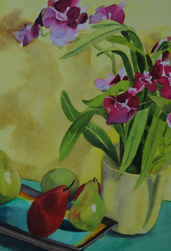 Pears & Orchids