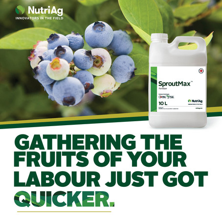 NutriAg Launches SproutMax™, One of the First Registered PGR Products in Canada for Blueberries