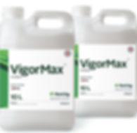 VigorMax.jpg