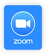 Logo Zoom-09.png