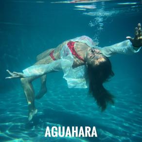 Aguahara: Una experiencia acuática