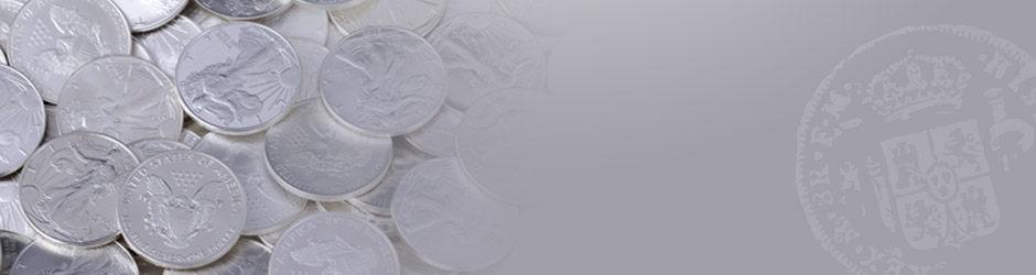 slide-silver.jpg