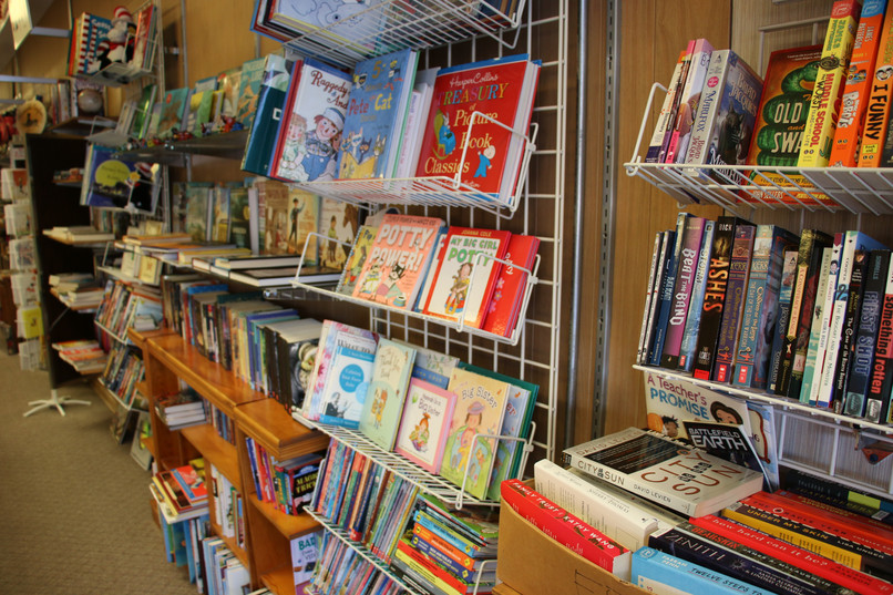 Illinois Books Sly Fox Bookstore Virden IL