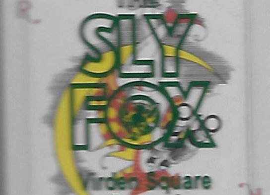 Sly Fox Playing Cards