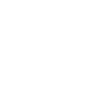 2020-Athletic-Hawk-OUTLINE-WHITE.png