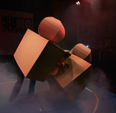 cardboard_sumo_colchester_edit_068_1000.