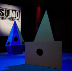 cardboard_sumo_colchester_edit_039_1000.