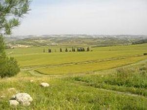 Elah_Valley_-_Passover_2014.jpg